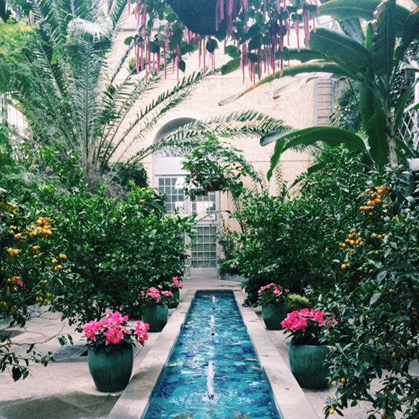 US Botanic Gardens | The Pursuit of Style