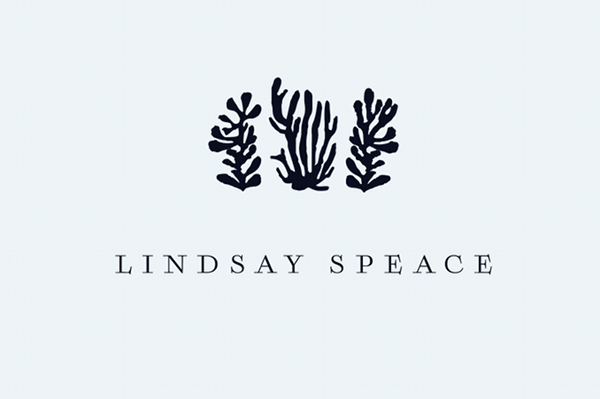 Lindsay Speace Interior Design