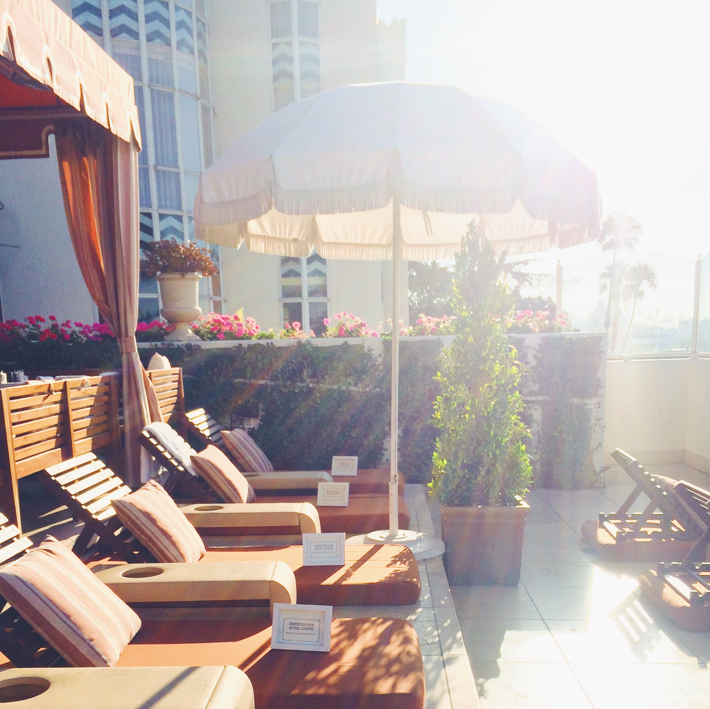 The Sunset Tower Hotel   The Pursuit of Style